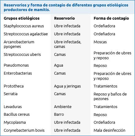 Reservorios y forma contagio mamitis